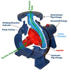Centrifugal Pump Cross Section